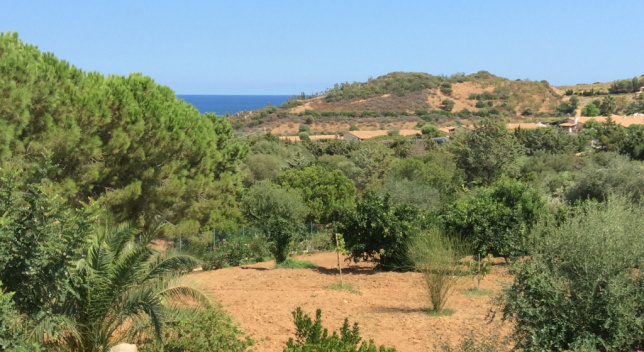 Villa with large land 500 metres from the sea